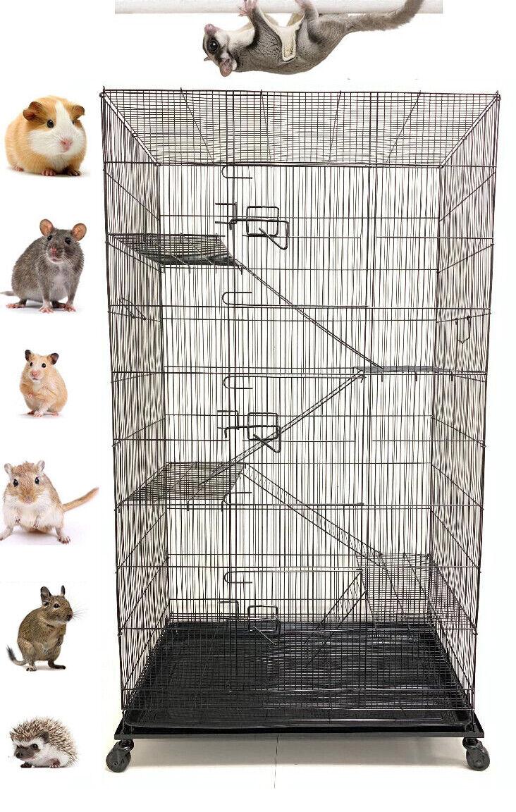 "55"" Large 5-Floor Sugar Glider Rodents Gerbils Rats Mice Squ"
