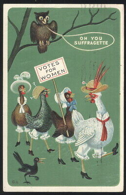 1911 EMBOSSED WINSCH BACK POST CARD WITH WOMEN'S SUFFRAGE THEME, OWL-CHICKENS