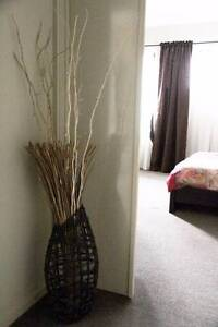 Shaggy White Grey rug, shaggy rug, brown rug, wicker vase bamboo Officer Cardinia Area Preview