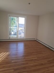 Bachelor in the Heart of Downtown Halifax!