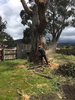 Huonvalley Tree and stump service