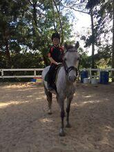 Horse Riding Lessons in Seville Seville Yarra Ranges Preview