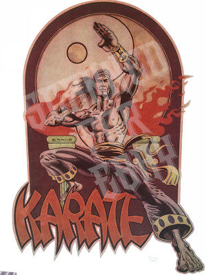 Karate Kung Fu Shaw Bros. VINTAGE T-SHIRT Iron on TRANSFER 1975