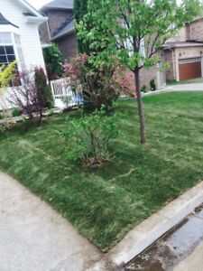 FREE LANDSCAPING ESTIMATES! CALL NOW!