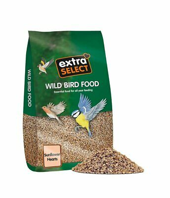 Extra Select Sunflower Hearts Wild Bird Food, 20 kg