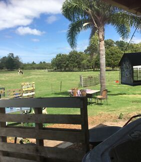 House/Farm Sitting Port Stephens