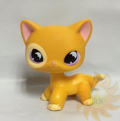 Littlest Pet Shop #855 Orange Yellow SHORT HAIR CAT Purple Moon Eyes Bat Eyes B2 (Pet Bats)