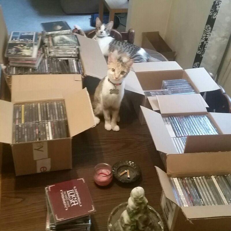heavy metal cd lot,10 cd Grab bag, wholesale,  hardcore, punk, death metal, rock