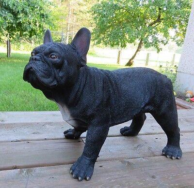 FRENCH BULLDOG DOG FIGURINE STATUE RESIN PET DECOR size 20'' L x 10'' W x 14'' H