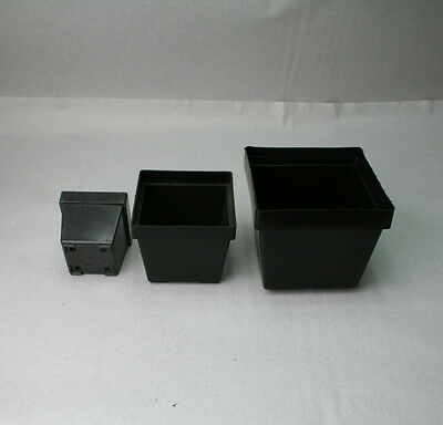 mentöpfe, 7x7x6,0 cm, Kunststoff-Vierkanttöpfe, 25 Stück (Kunststoff-töpfe)