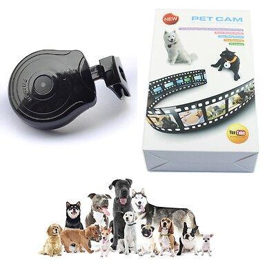 Hundekamera Katzenkamera Tierkamera Haustierekamera Video Foto Kamera Halsband (Kamera Video-kamera)