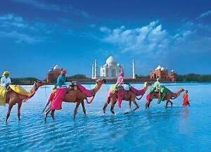 INDIAN RESTAURANT BUSINESS - $45000 Potts Point Inner Sydney Preview