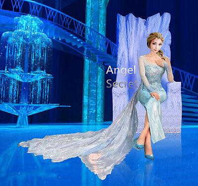 Frozen Dresses For Adults (j999 Elsa performer costume with CL28 park version cape women adult frozen)