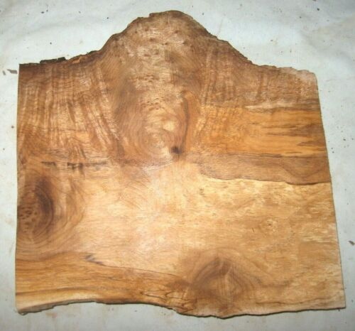 MAPLE BURL SLAB LIVE EDGE TURNING CRAFTING WOODWORKING APPROX 11x11x1.25 IN