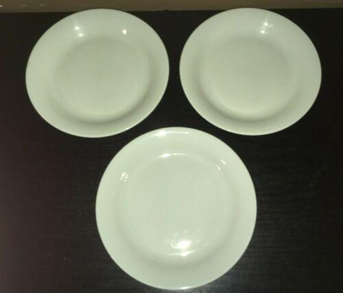 """(3) Dansk TJORN CELADON 9"""" Salad Plates  ******"""
