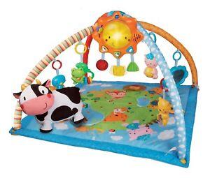 VTech baby play mat activity gym
