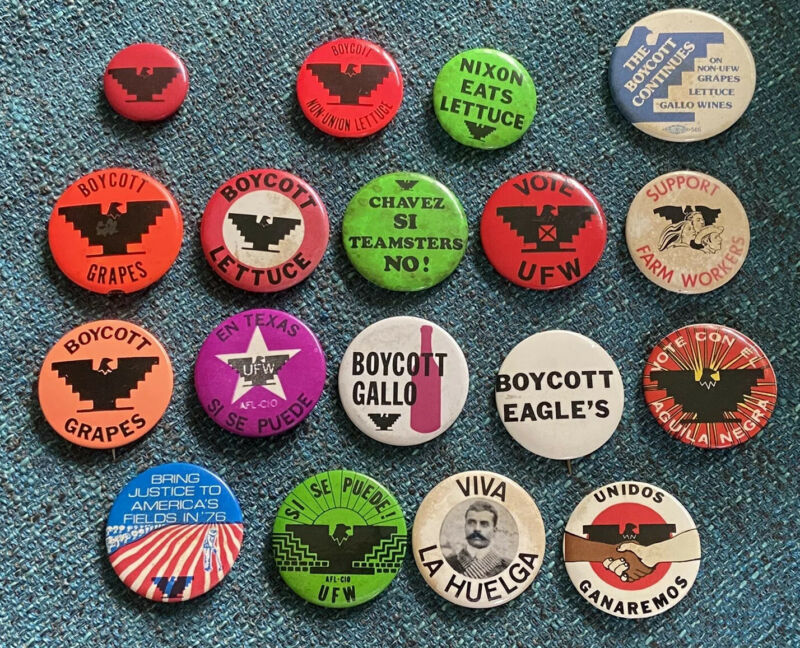 United Farm Workers Pin Button Pinback Lot of 18 UFW Cesar Chavez Boycott Grapes