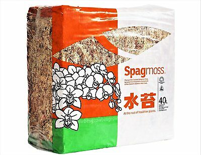 Sphagnum Moss 40 Liters New Zealand Grade AAA Great for Reptiles, Bedding 500gm