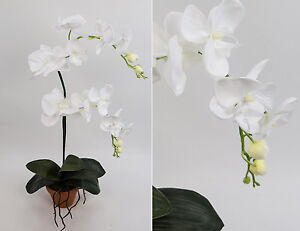 Orchidee Deluxe rein-weiß AD Kunstblumen Seidenblumen künstliche Blumen