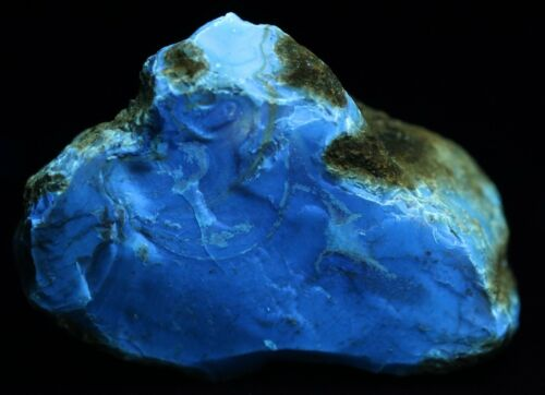 Fossil Indonesian Blue Amber UV Miocene West Java Indonesia COA 3492