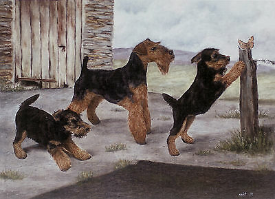 "WELSH TERRIER DOG FINE ART LIMITED EDITION PRINT - ""The Visitor"""