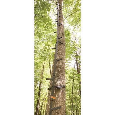 Climbing Sticks 20