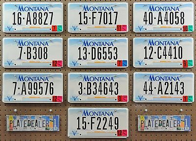10 MONTANA 2000 Base Flat License Plates Tags Art Signs Man Cave Decor LOT 827