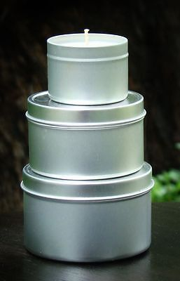 GIFT PACK of 3 KIWI FRUIT & VANILLA WILD BERRIES Scented SOY CANDLE TINS Travel