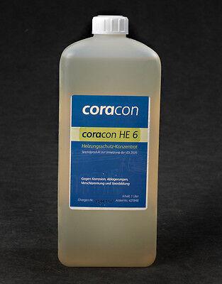 Korrosionsschutz Biogas Anlage, BHKW: CORACON HE 6