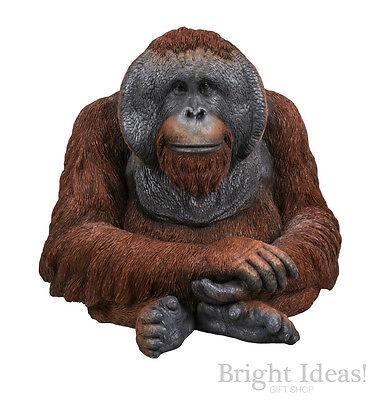 Vivid Arts - REAL LIFE ZOO ANIMALS - Large Orangutan