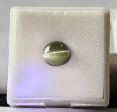 Chrysoberyl Cat's Eye cabochon Natural gemstone