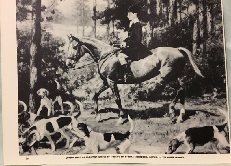 VINTAGE JUNIOR MEAD HOUNDS IN AIKEN WOODS HORSE GEORGE FORD MORRIS 1952 PRINT