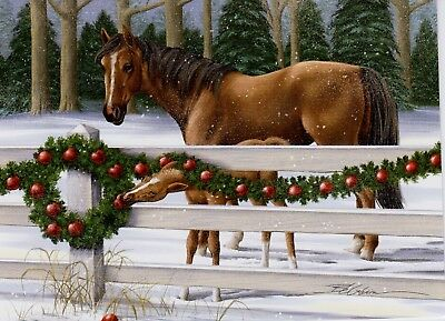 Christmas Horse And Colt Snow Trees Greetings Holiday Greeting Cards   ()