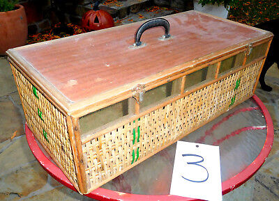 "26"" Old Wicker Screen Racing Pigeon 5 Bird Vtg Carrier Box Crate Cage Transport"