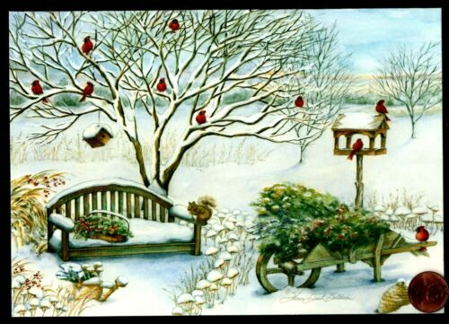Christmas Squirrel Cardinals Birds Bench Snow Tree  - Christmas Greeting Card