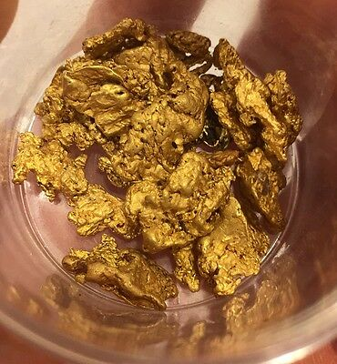 Gold Paydirt 1 Lb 100% Unsearched and Guaranteed Added GOLD! Panning BOGO