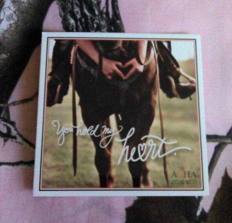 American Quarter Horse Association Sticker - New - AQHA