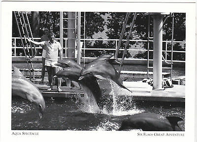 "*Postcard-""The Aqua Spectacle/Dolphin Show""-SIX FLAGS GREAT ADVENTURE  (A8-2)"