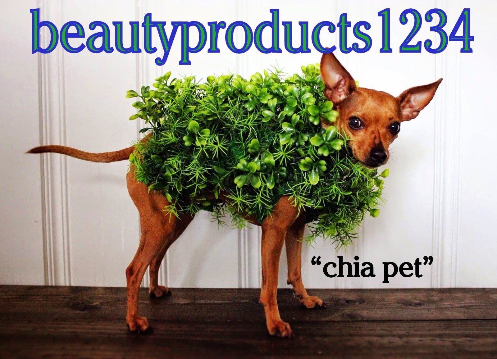 beautyproducts1234