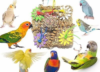 Chew & Forage Activity Vine Mat Bird Toy - Made in the USA