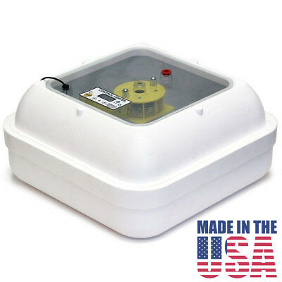 Incubator Genesis Hova-Bator 1588 GQF Tabletop Incubator - Classrooms & Lab Use