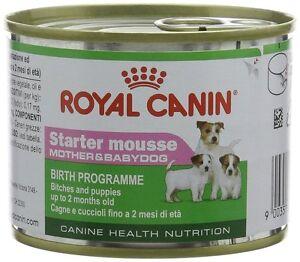 royal-canin-cibo-per-cani-AVVIATORE-Mousse-12-x-195-gr
