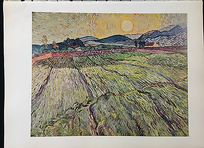 "1950 Vintage Full Color Art Plate ""LANDSCAPE w/ PLOUGHED FIELDS"" VAN GOGH Litho"