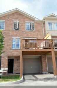 Town home for rent @ Markham rd+ Lawrence e