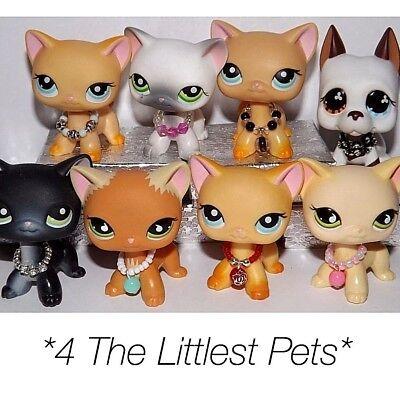 💞Littlest Pet Shop accessories clothes 3pc random collars LPS CAT NOT INCLUDED