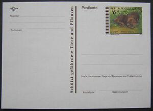 Postkarte Igel, postfrisch ** - <span itemprop=availableAtOrFrom>Wien, Österreich</span> - Postkarte Igel, postfrisch ** - Wien, Österreich
