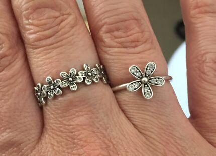 Two pandora rings
