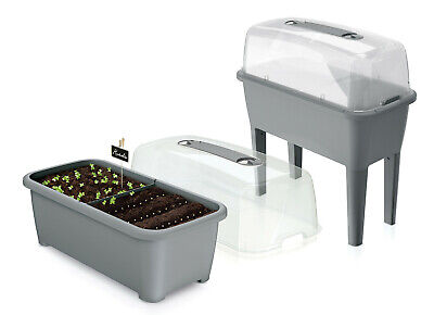 GREY Large Greenhouse seeding Plant table Planter Grow House +plastic lid cover