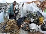 Garbage/ Debris/Junk Removal Services