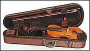 Stentor Violin